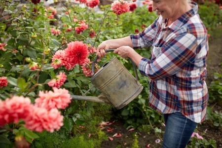 Prace pielęgnacyjne w ogrodzie i na tarasie w maju